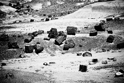 Photograph - Petrified Forest National Park #3 by Robert J Caputo