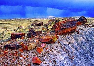 Photograph - Petrified Forest National Park by Gary Corbett