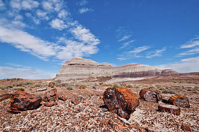 Photograph - Petrified Logs At Crystal Forest by Jeff Goulden