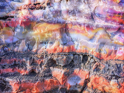 Photograph - Petrified Wood Colors by Todd Breitling