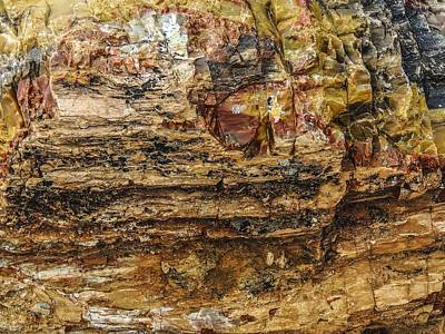Photograph - Petrified Wood Or Jewels by NaturesPix