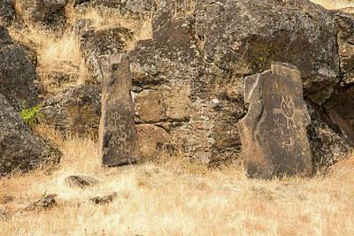 Photograph - Petroglyph  3 by Tom Cochran