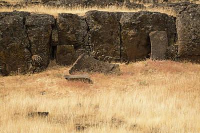 Photograph - Petroglyph  5 by Tom Cochran