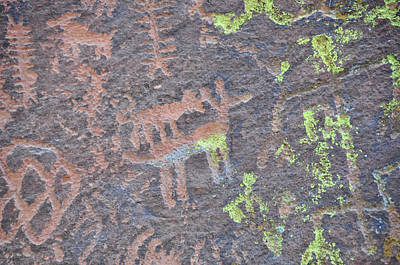 Photograph - Petroglyph Wolf Attack by David Arment