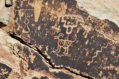 Photograph - Petroglyphic Antelope by David Arment