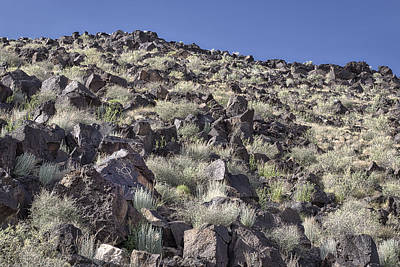 Photograph - Petroglyphs I - Albuquerque - New Mexico by Steven Ralser