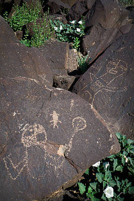 Photograph - Petroglyphs With Sacred Datura by Mary Lee Dereske