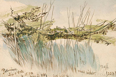 Drawing - Pettenasco, Lago D'orta by Edward Lear