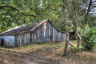 Photograph - Petty Barn One by Lisa Moore