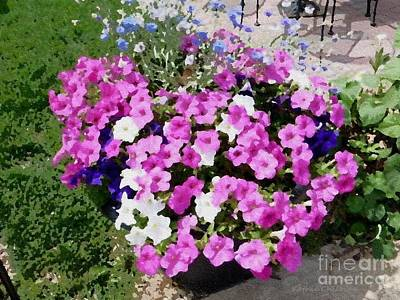 Photograph - Petunias by Kathie Chicoine