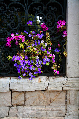 Photograph - Petunias Through Wrought Iron Window by Donna Corless
