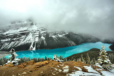 Photograph - Peyto Blue In A Sea Of Fog by Adam Jewell