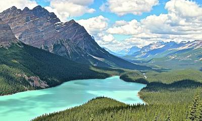 Photograph - Peyto In August by Frozen in Time Fine Art Photography