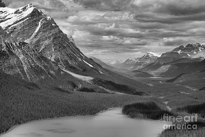 Photograph - Peyto In The Rockies Black And White by Adam Jewell