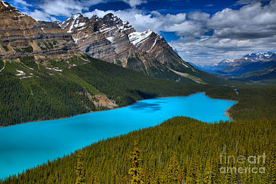 Photograph - Peyto Lake Endless Blues by Adam Jewell