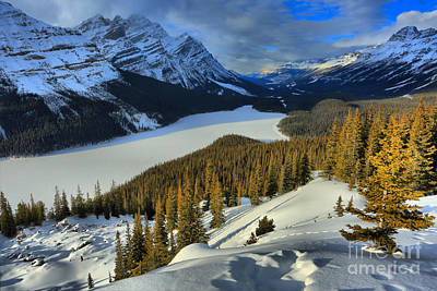Photograph - Peyto Lake In The Dead Of Winter by Adam Jewell