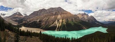 Photograph - Peyto Lake by Rick Furmanek