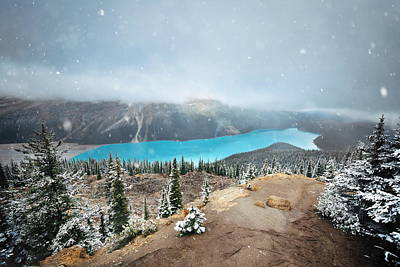 Photograph - Peyto Lake by Songquan Deng