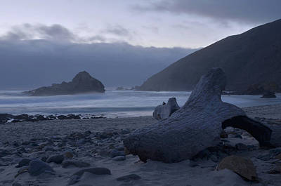 Pfeiffer Beach Photograph - Pfeiffer Beach - Big Sur by Stephen  Vecchiotti