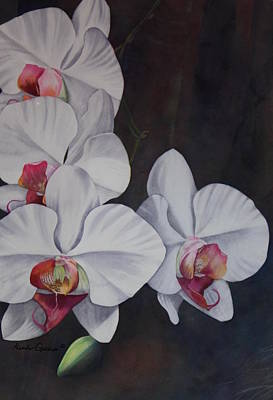 Gallup Painting - Phalaenopsis Beauty by Heather Gallup