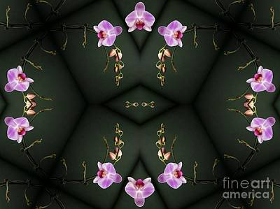 Photograph - Phalaenopsis Orchid Ballet by Renee Trenholm