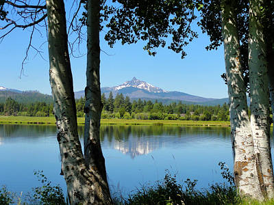 Black Butte Ranch Photograph - Phalarope Lake by Charmaine Anderson