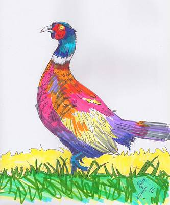 Drawing - Pheasant Drawing by Mike Jory
