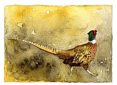 Painting - Pheasant by Eunice Olson