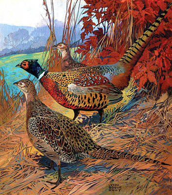Painting - Pheasants by Lynn Bogue Hunt