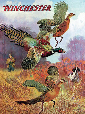 Pheasants On The Rise Art Print by Lynn Bogue Hunt