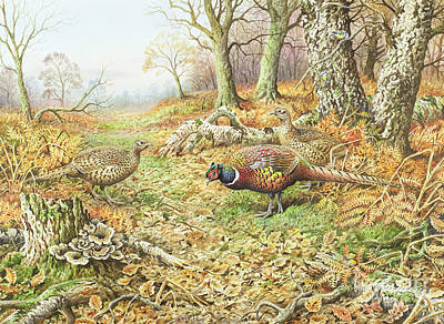 Pheasants With Blue Tits Print by Carl Donner