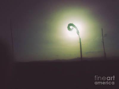 Mba Photograph - Phi Sun  by Serko  Kerim