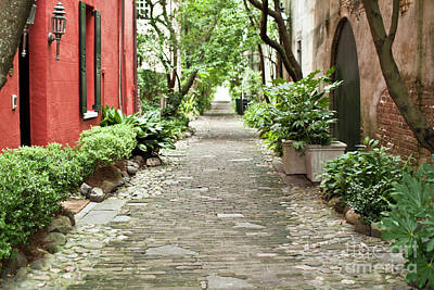 Red Photograph - Philadelphia Alley Charleston Pathway by Dustin K Ryan