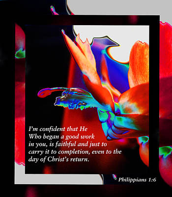Photograph - Philippians 1 Vs 6 by Kate Word