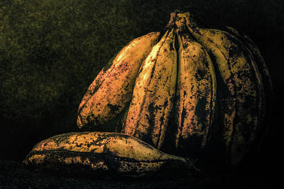 Photograph - Philippine Bananas by Michael Arend
