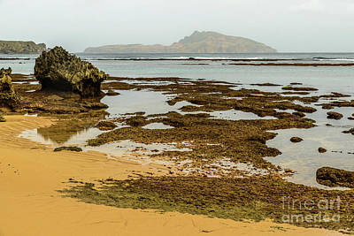 Photograph - Phillip Island 01 by Werner Padarin