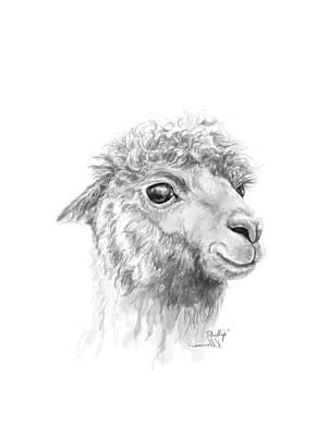Animals Drawings - Phillip by K Llamas