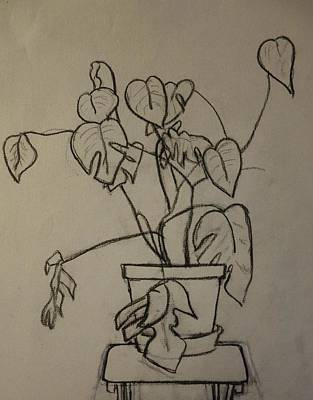 Houseplants Drawing - Philodendron Sculpture by Rauno Joks