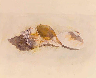 Painting - Phinney's Point Shells by Tyler Ryder