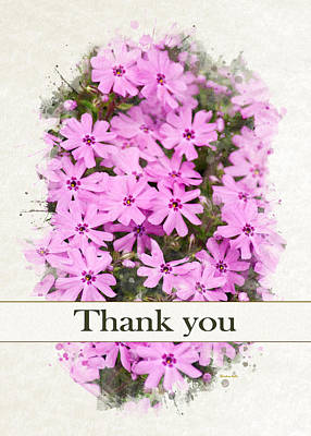 Mixed Media - Phlox Flowers Watercolor Thank You Card by Christina Rollo