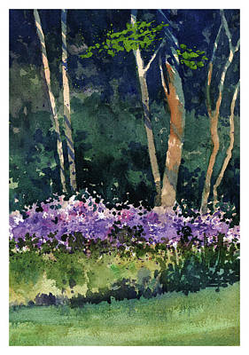 Phlox Meadow, Harrington State Park Art Print