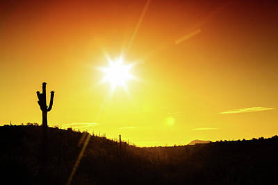 Photograph - Phoenix Arizona Desert Sunset Silhouette by Susan Schmitz