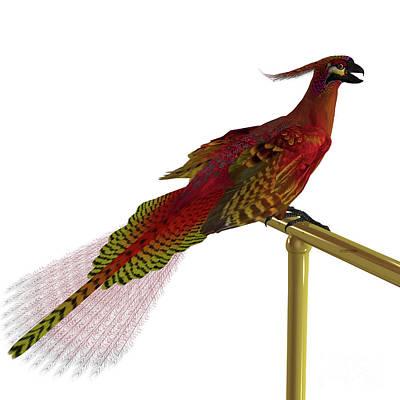 Yellow Beak Digital Art - Phoenix Bird On Perch by Corey Ford