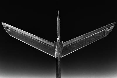 Photograph - Phoenixski by Jay Beckman