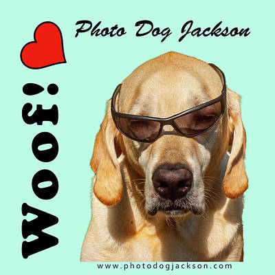 Photograph - Photo Dog Jackson Mug by Matthew Irvin