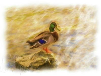 Digital Art - Photo Painting Mallard by Rusty R Smith