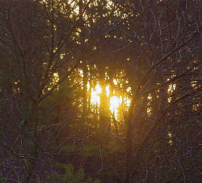 Photo Winter Solstice Dawn Art Print by Ray  Petersen