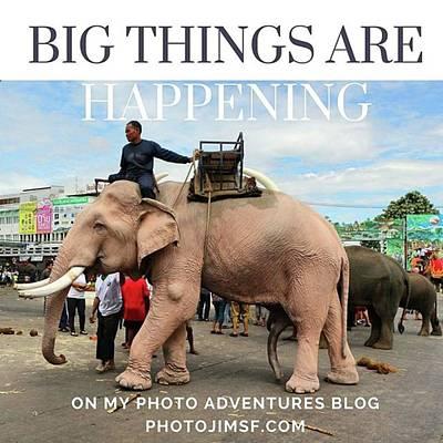Art Print featuring the photograph #photoadventure #travel #thailand by Mr Photojimsf