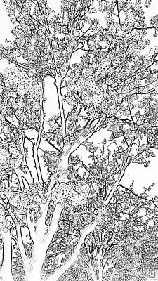 Digital Art - Photocopy Of Spring by Eric Forster