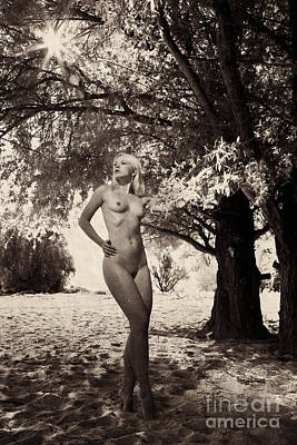 Photograph - Photograph Old Vintage Look With Nude Beauty #6970k by William Langeveld